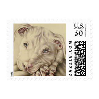 White Pit bull Drawing with Blue Eyes on Stamp