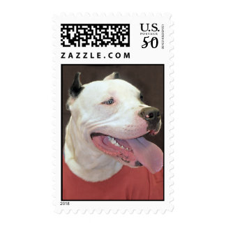White Pit Bull Postage Stamps
