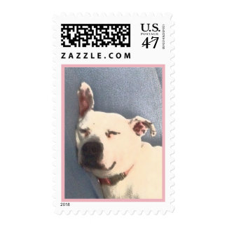 White Pit Bull Sleeping Postage Stamp