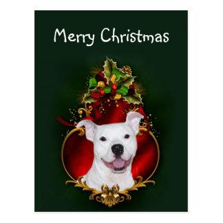 White pitbull Christmas Postcard