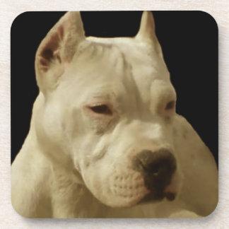 White Pitbull dog Drink Coaster