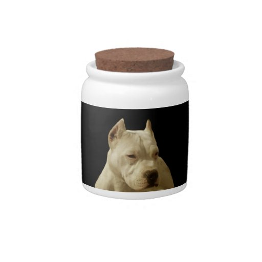 White Pitbull Terrier Candy Dish