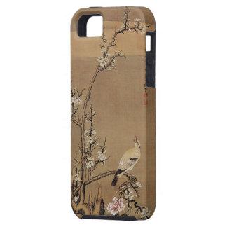 White Plum Blossoms and Yellow Birds by Kurokawa K iPhone 5 Case