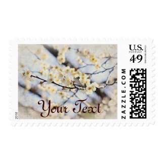 White Plum Blossoms With Vintage Brocade Corners Postage Stamp
