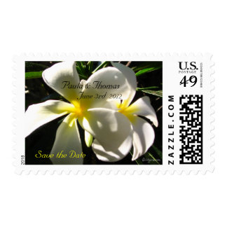 White Plumaria Save the Date Wedding Stamps Postage Stamp