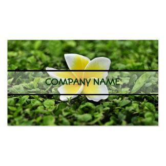White Plumeria 2 Business Card