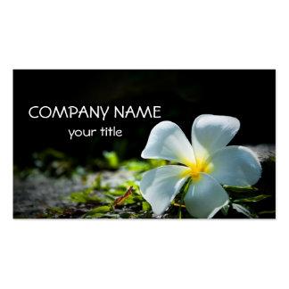 White Plumeria Business Card Templates