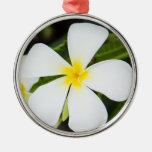 White Plumeria Flower - Frangipani Floral Template Round Metal Christmas Ornament