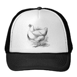 white plymouth rock hen trucker hat