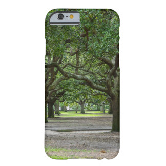 White Point Gardens Painterly Barely There iPhone 6 Case