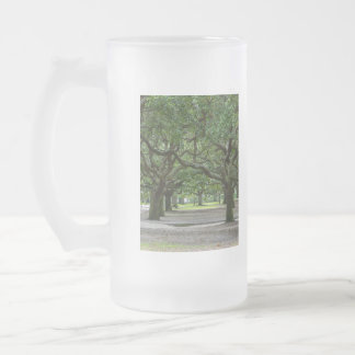 White Point Gardens Painterly Frosted Glass Beer Mug