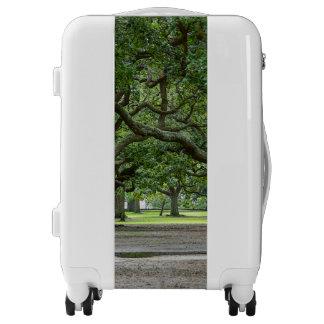 White Point Gardens Painterly Luggage