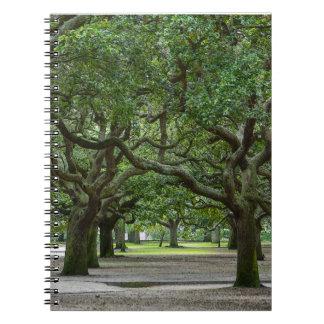 White Point Gardens Painterly Spiral Notebook