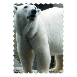 White Polar Bear Card