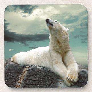 White Polar Bear Hunter on rock Beverage Coaster