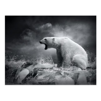 White Polar Bear Hunter on the Ice in water Postcard