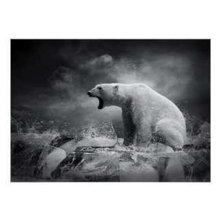 White Polar Bear Hunter on the Ice in water Poster