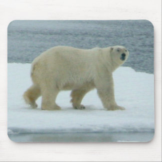 White Polar Bear Mouse Pad