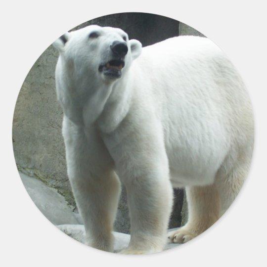White Polar Bear Sticker