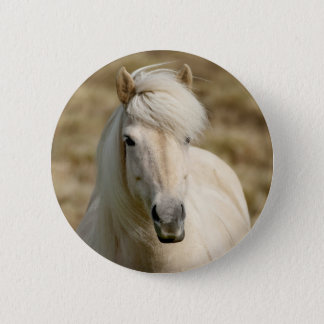 White Pony Pinback Button