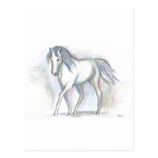White Pony Postcard