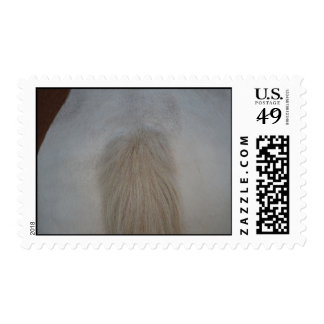 white pony tail straight on equine horse design postage stamp