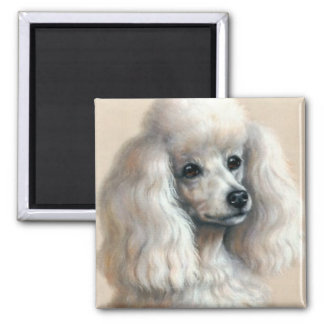 White Poodle 2 Inch Square Magnet