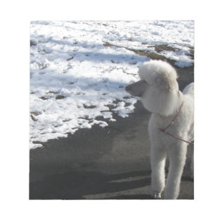 White Poodle by the Snow Note Pad