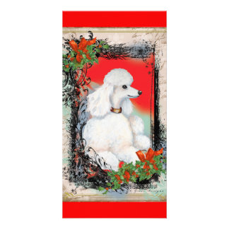 White Poodle Christmas Vintage Style Card
