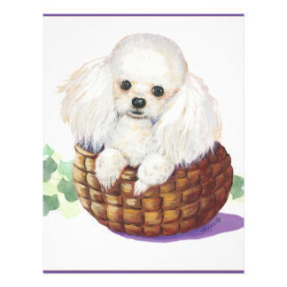 White Poodle in Basket Art Print Flyer