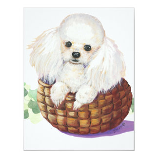 White Poodle in Basket Art Print Invitations