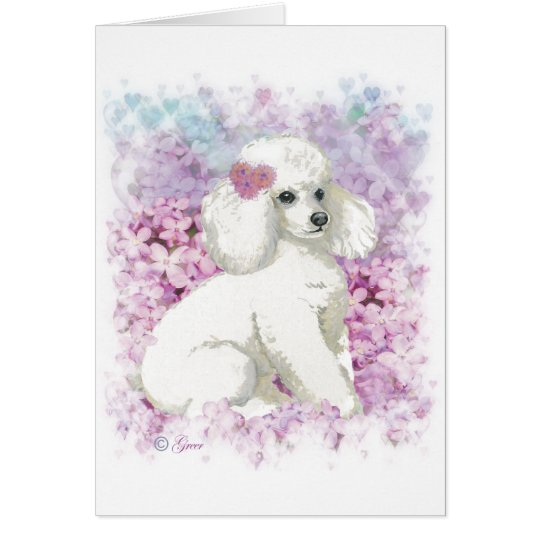 White Poodle in the Lilacs Art and Gifts Card