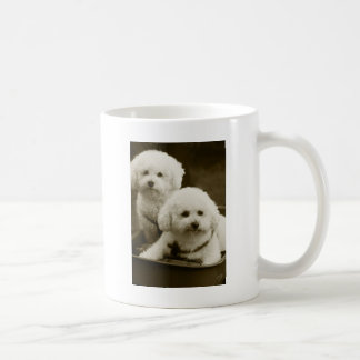 White Poodle Puppy Twins Coffee Mugs