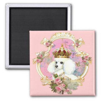 white poodle wi pink roses gold fr fini clr bkgrnd fridge magnet