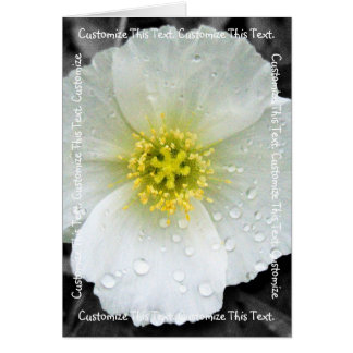 White Poppy After the Rain; Customizable Card