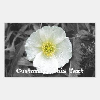 White Poppy After the Rain; Customizable Rectangular Sticker