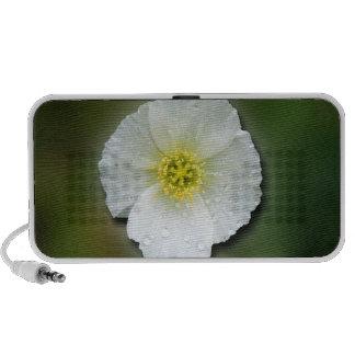 White Poppy Blurred Background Notebook Speaker