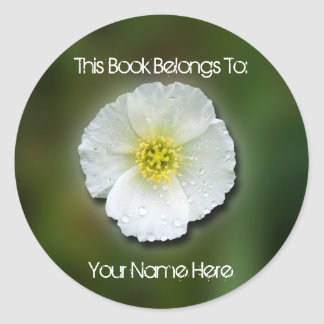 White Poppy Blurred Background Classic Round Sticker