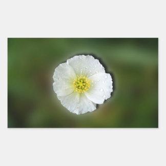 White Poppy Blurred Background Rectangular Sticker