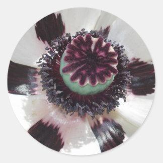 White poppy classic round sticker