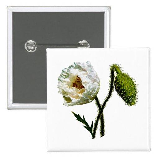 White Poppy Pins