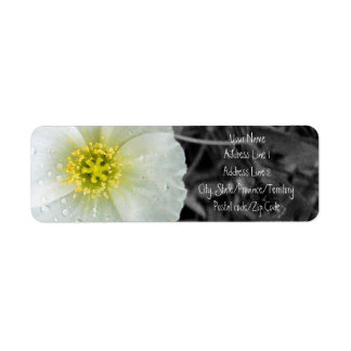 White Poppy with Rain Droplets, Black and White Ba Label