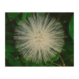 White Powder Puff Flower Wood Wall Decor