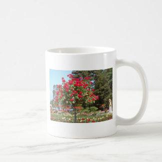 White Public Gardens, Geneva, Switzerland flowers Classic White Coffee Mug