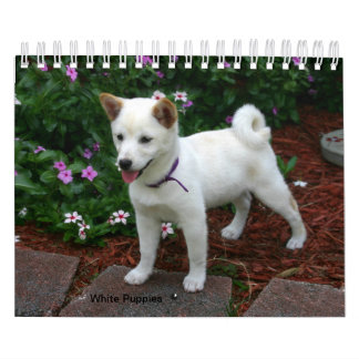 White Puppies Calendar