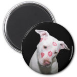 White Puppy Dog Love, Sealed with Lipstick Kisses 2 Inch Round Magnet