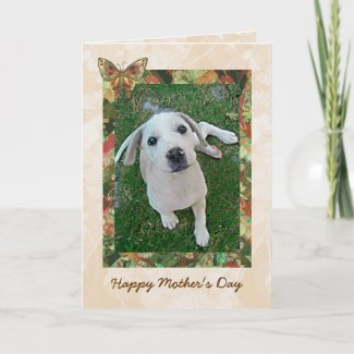 White Puppy Mothers Day Card | Photo Template