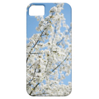 White Purity iPhone 5 Covers