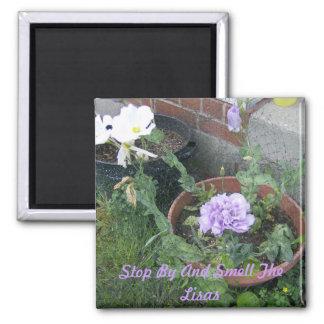 White & Purple Lisa Flower 2 Inch Square Magnet