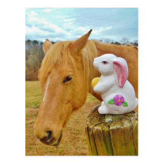 White rabbit and blond yellow horse post cards